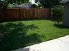 Sod Lawn Installation